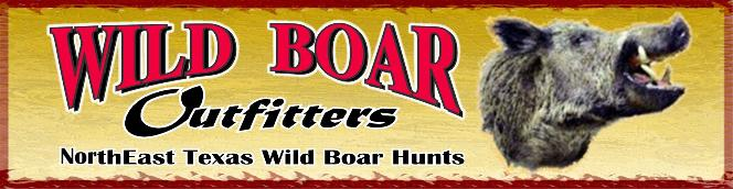 Wild Boar Hog hunting in Texas